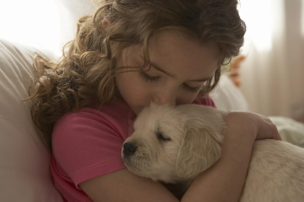 Enseñar a las mascotas con paciencia y amor.
