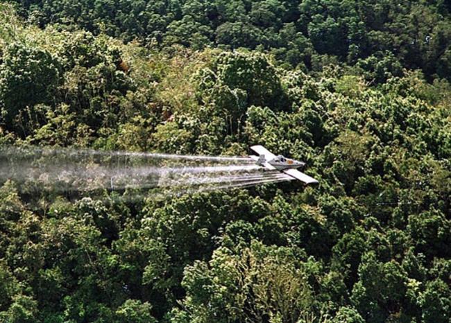 351719_BLU RADIO. Fumigación cultivos. Foto: AFP