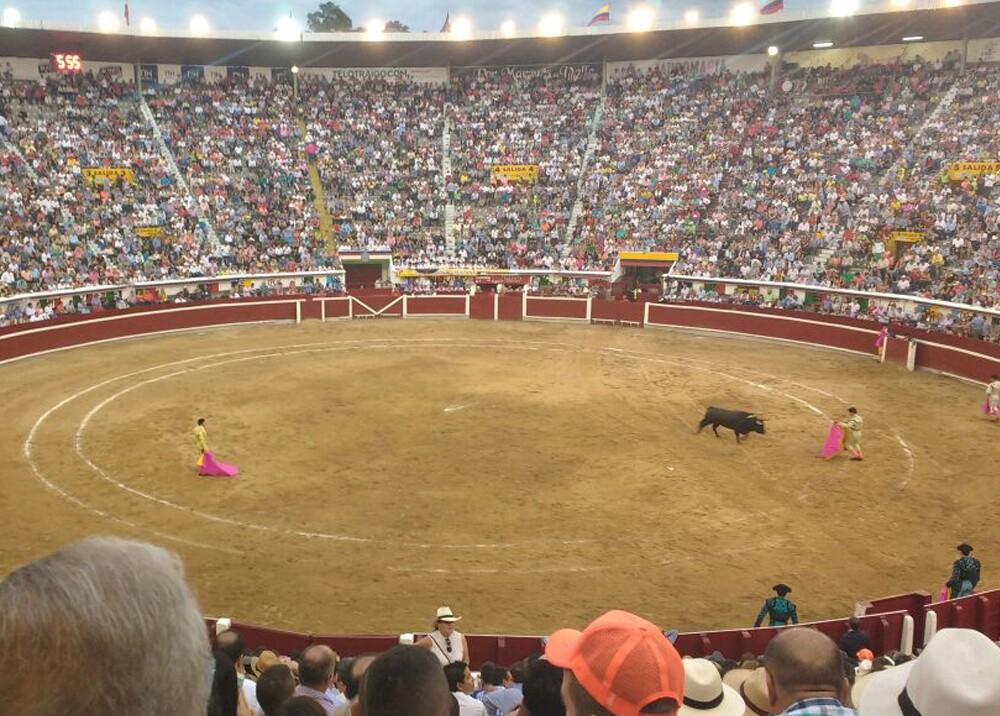 285834_Blu Radio / Animalistas harán marcha para rechazar las corridas de toros en la Feria de Cali. Foto: Cortesía Andrea González.