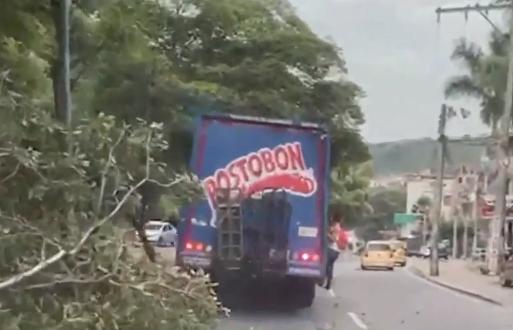 camión de gaseosas.png