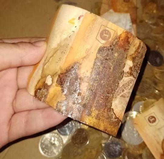 ahorros de una mujer de Malasia se oxidan