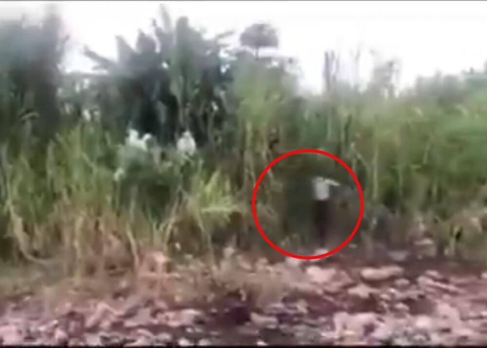 Fantasma de joven asesinada aparece cuando el hermano llega a escena del crimen.jpg