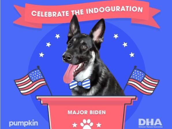 Major, el perro de los Biden, tendrá su propia posesión.jpg