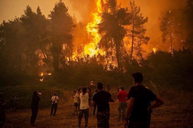 cambio climatico efectos irreversibles
