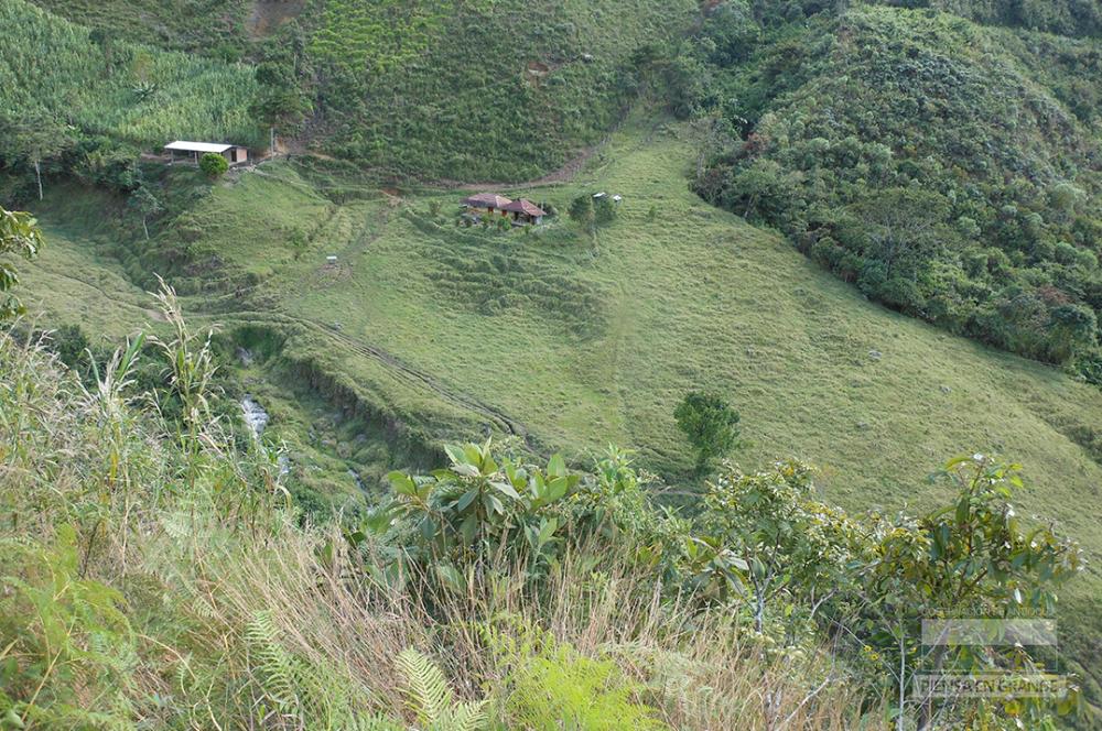 283653_BLU Radio. Zona veredal Ituango / Foto: Gobernación de Antioquia