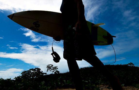 Surfista-Tiburon