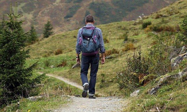 5 senderos para hacer caminatas ecológicas en Bogotá