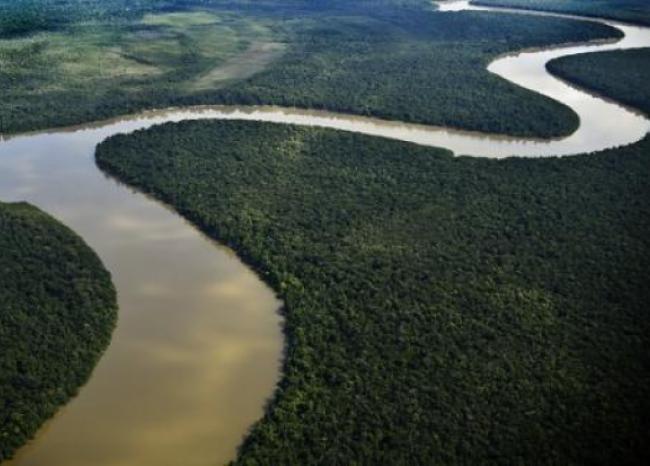 144809_BLU Radio. Medio ambiente / Foto referencia: Foto: AFP
