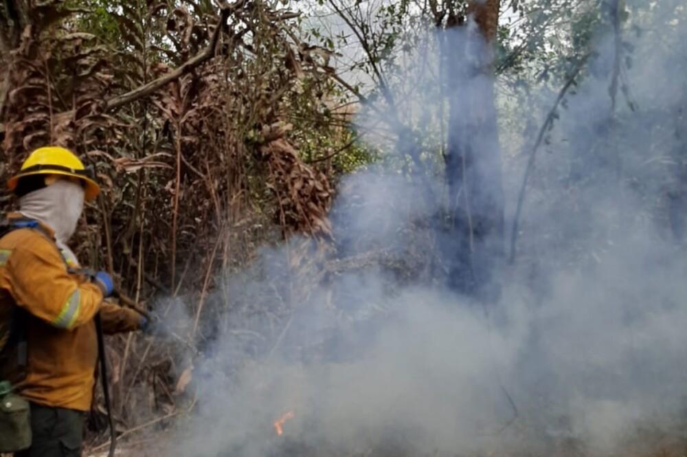 374733_BLU Radio // Incendio en Vía Parque Isla Salamanca // Foto: PNNC