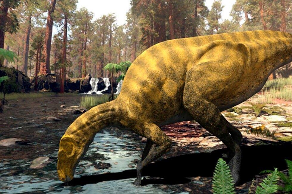Especie desconocida de dinosaurio