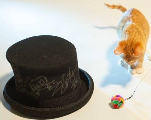 Imagen de la subasta de sombrero de Slash autografiado