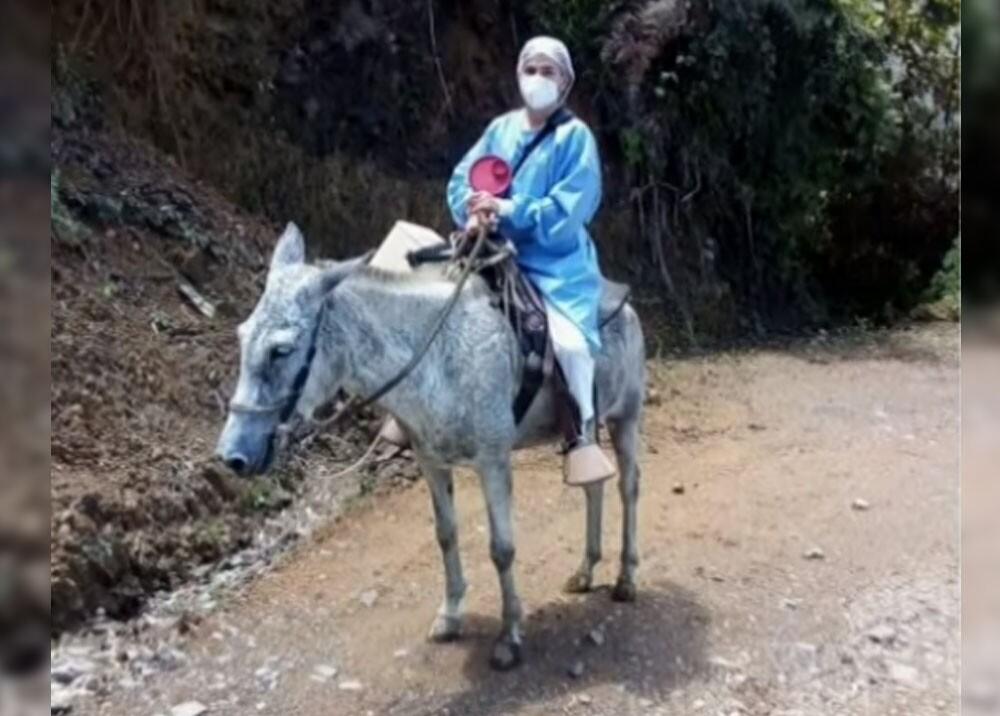 blanca zuluaga la enfermera que vacuna a caballo en caldas.jpg