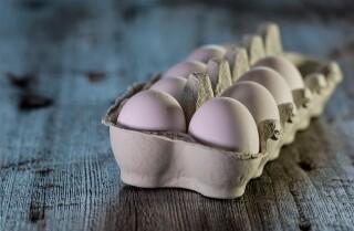 cubeta de huevos
