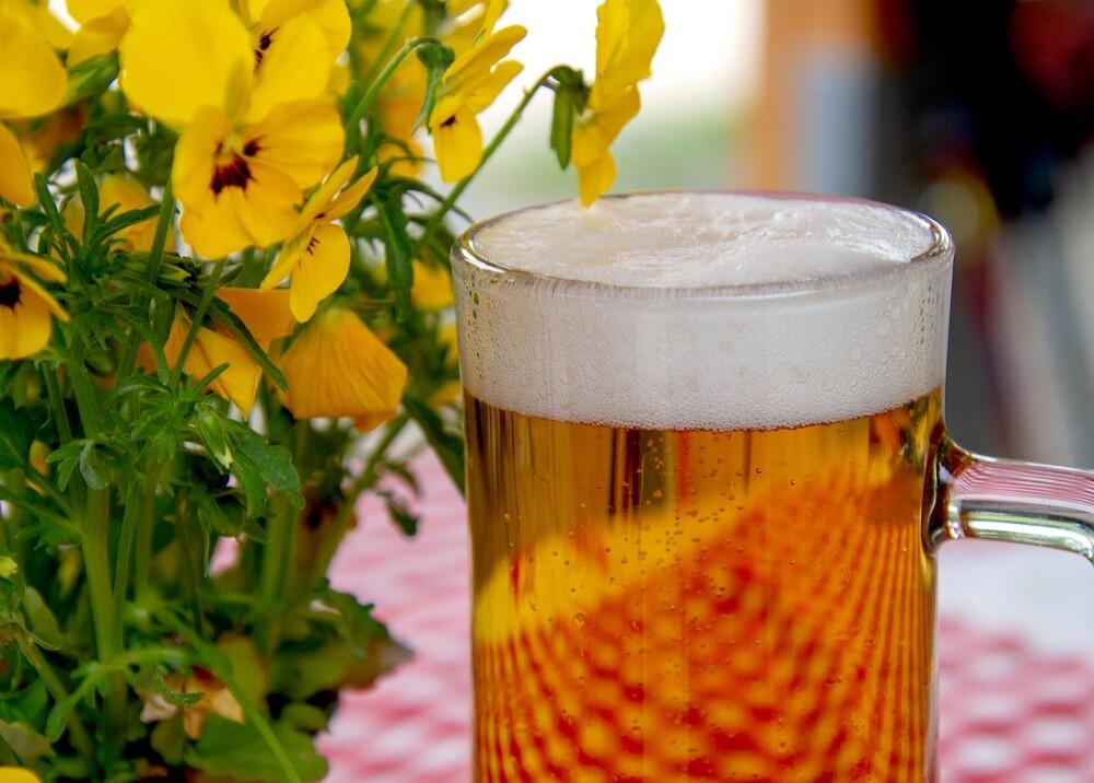 23046_cerveza referencia // FOTO: Pixabay
