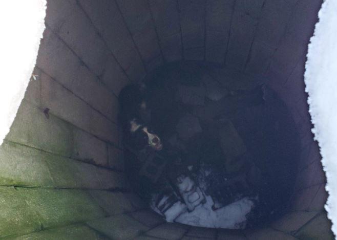 perro atrapado en pozo es rescatado