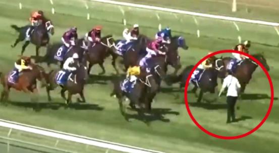 Hincha se metió a una carrera de caballos en Nueva Zelanda.