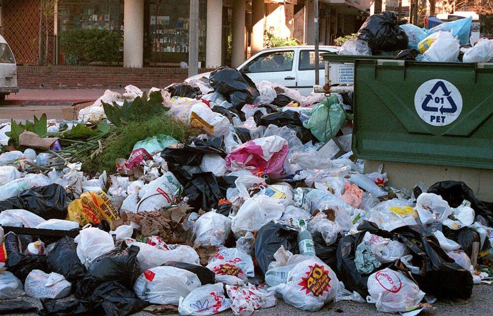 """Madre de familia """"bucea entre basura"""" para sostener a sus hijos y gana 1.000 dólares por semana"""