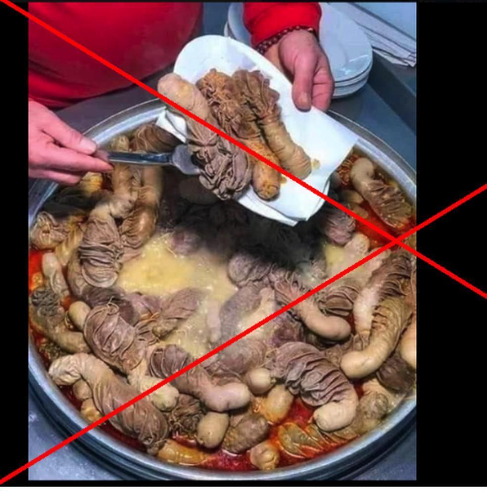 365165_Supuesto plato chino con penes de animales. Foto: AFP