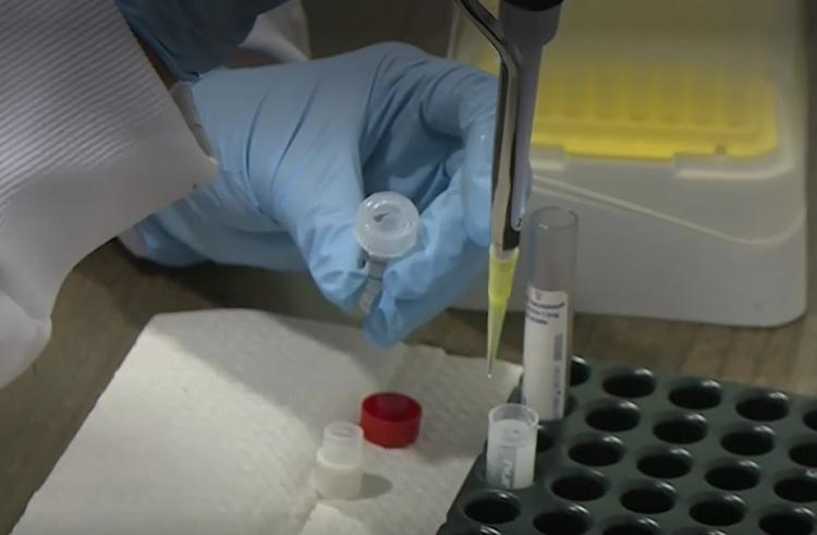 ¿Posibilidad de reinfección del COVID-19 ha aumentado con la variante delta?
