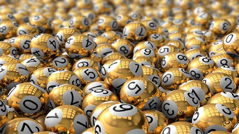 Bingo Millonario