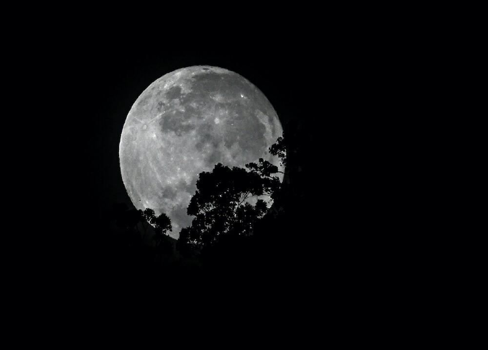 Luna / AFP