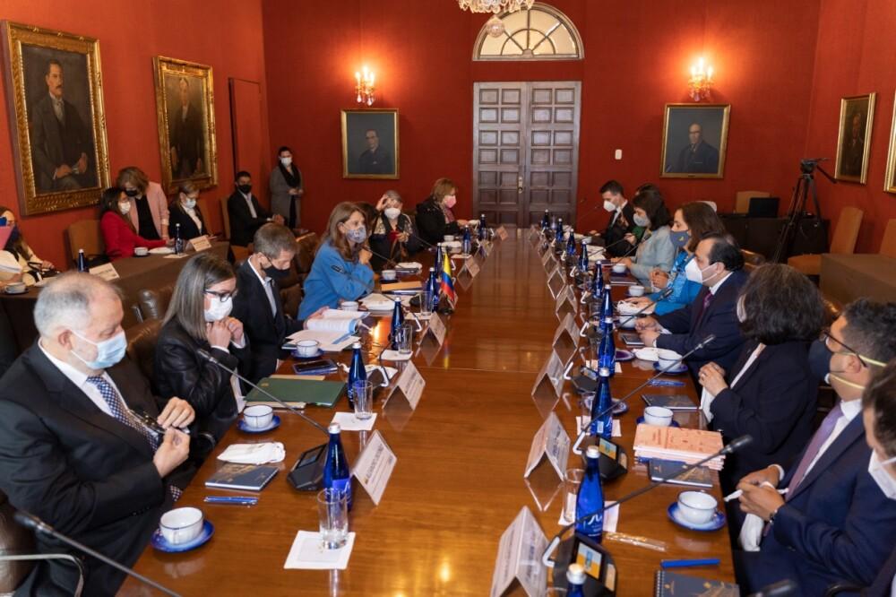 reunión entre el Gobierno y los integrantes de la Comisión Interamericana de Derechos Humanos..jpeg