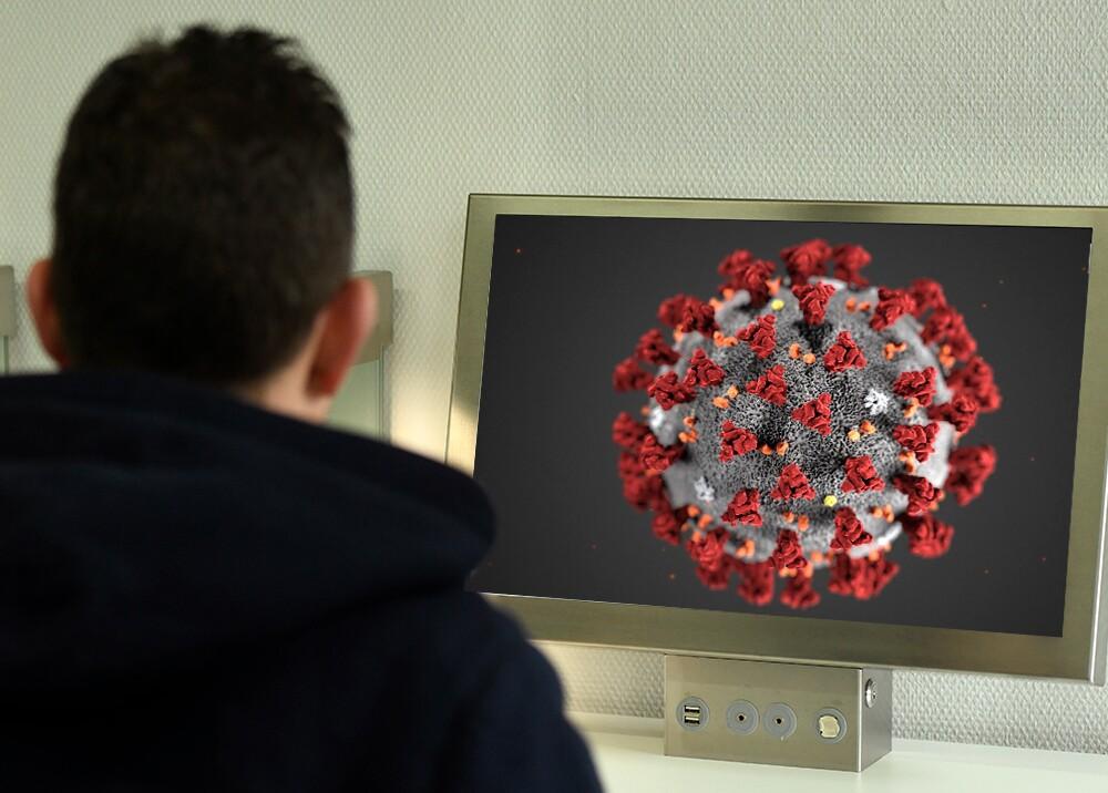 356827_Coronavirus en internet, fotocomposición / Fotos: AFP