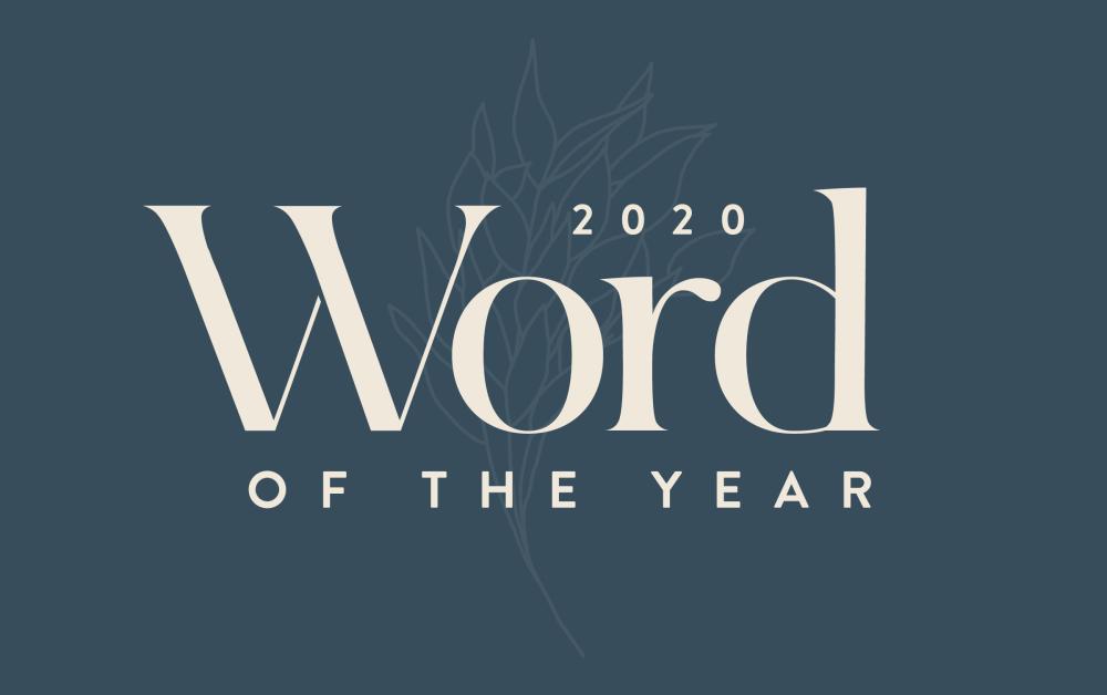 palabra del año.png