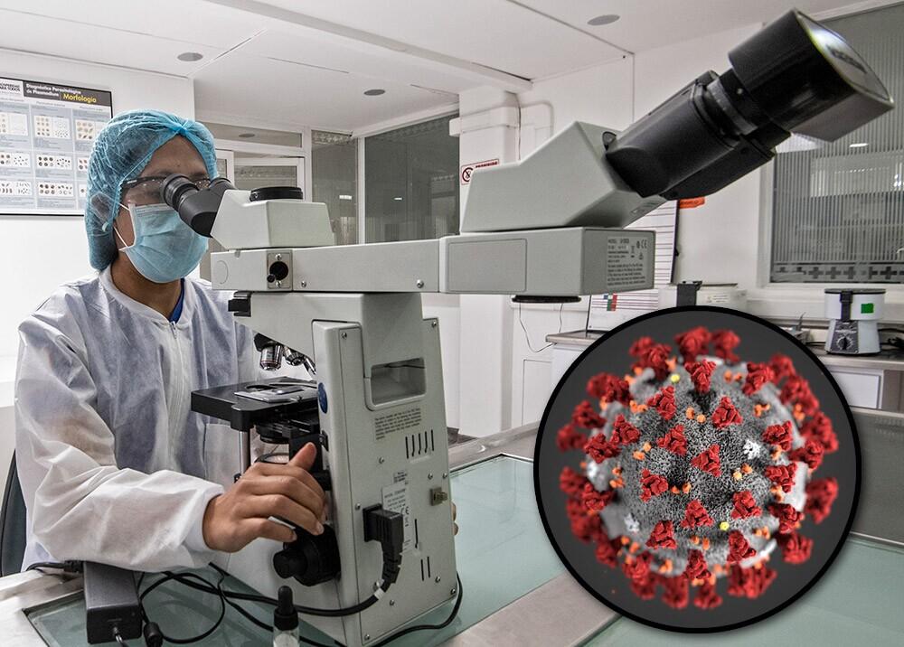 Coronavirus - microscopio