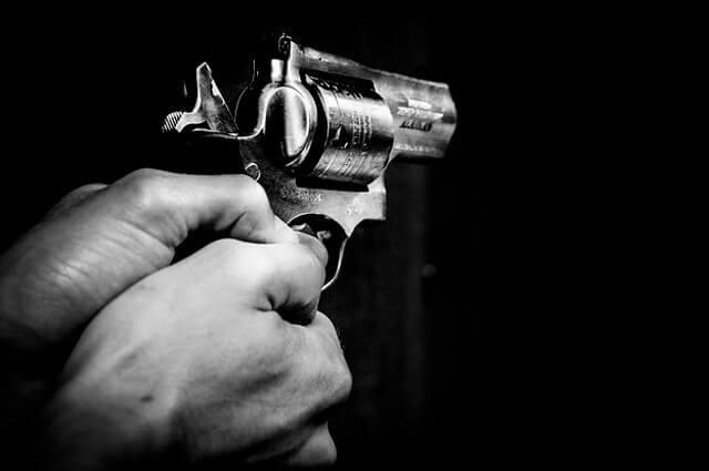 pistola_imagen_referencia_0.jpg