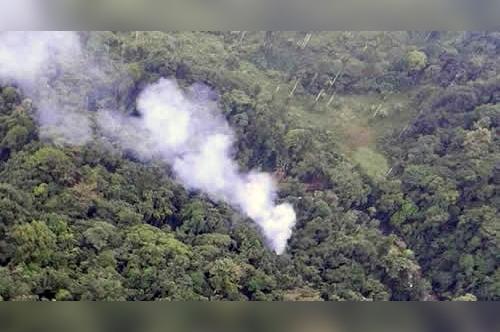 2344_Incendio forestal, Necoclí, Antioquia / Foto: Policía Nacional