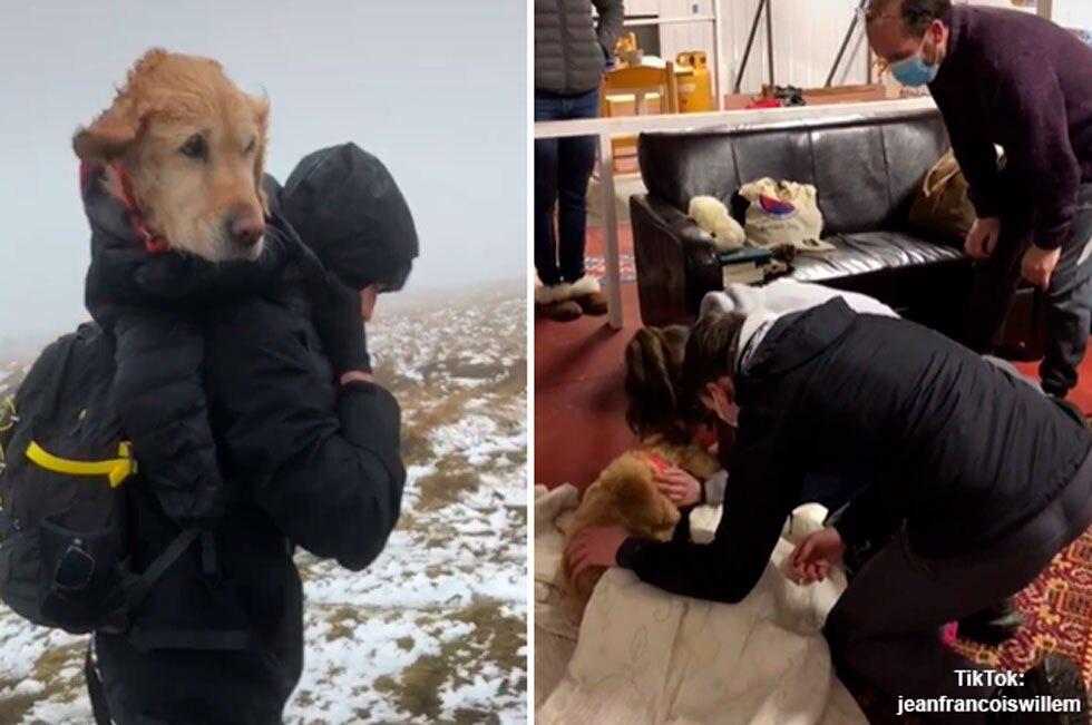 Rescatan a perrita en helada montaña