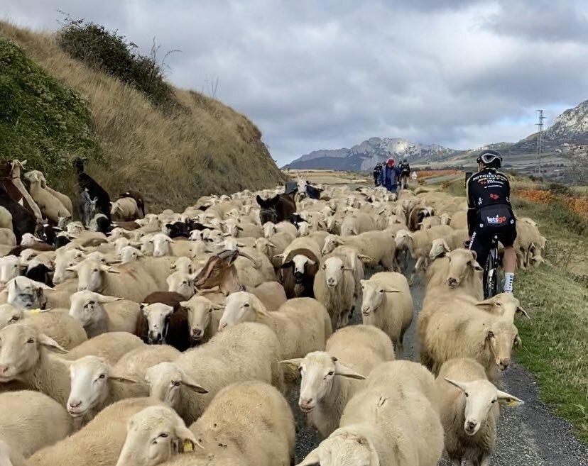 La Vuelta a España - Mitchelton- Scott
