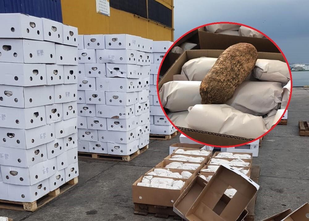 cargamento de ñame exportado a europa.jpg