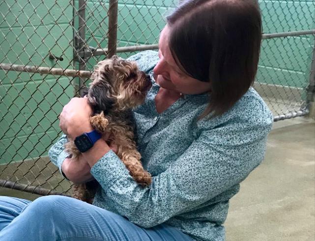 Mujer se reencontró con su mascota tras 7 años