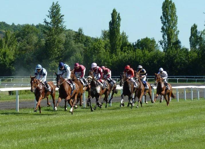 carrera de caballo