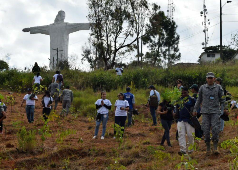 335601_Foto: Fuerza Aérea Colombiana