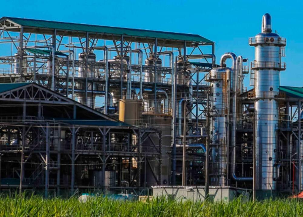 368955_Bioenergy // Foto: Suministrada