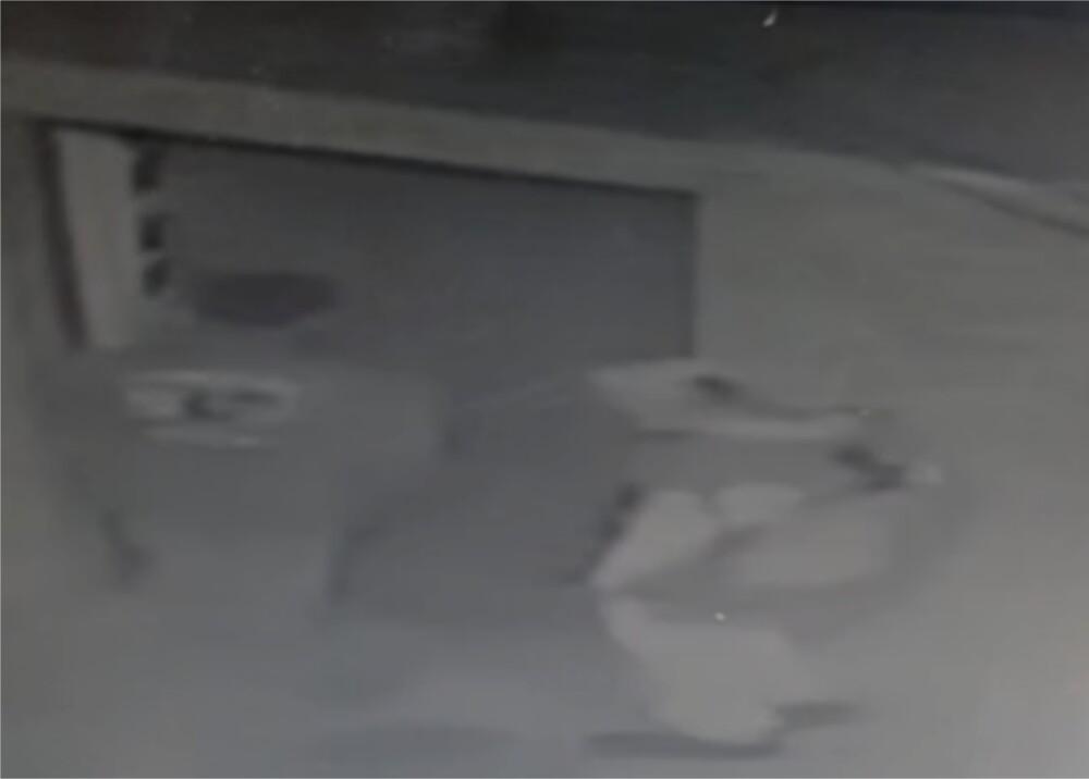 Ladrones en San Cristóbal Foto captura de video.jpg