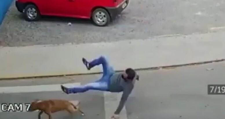 video viral a hombre lo atropella un perro.jpeg