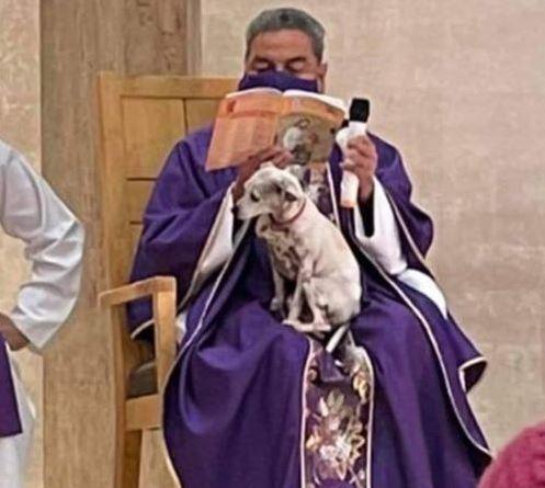 Padre da misa con su perro alzado