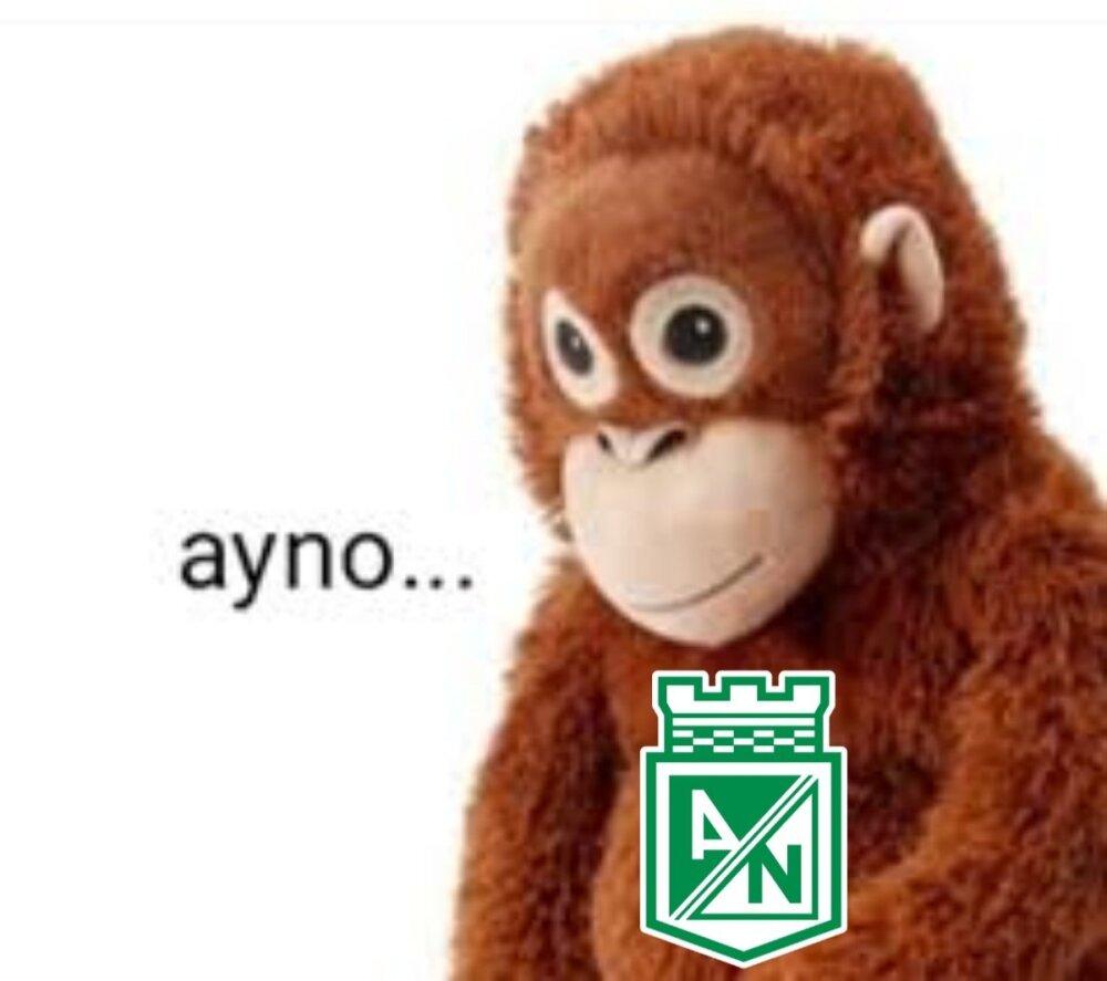 Meme Atlético Nacional