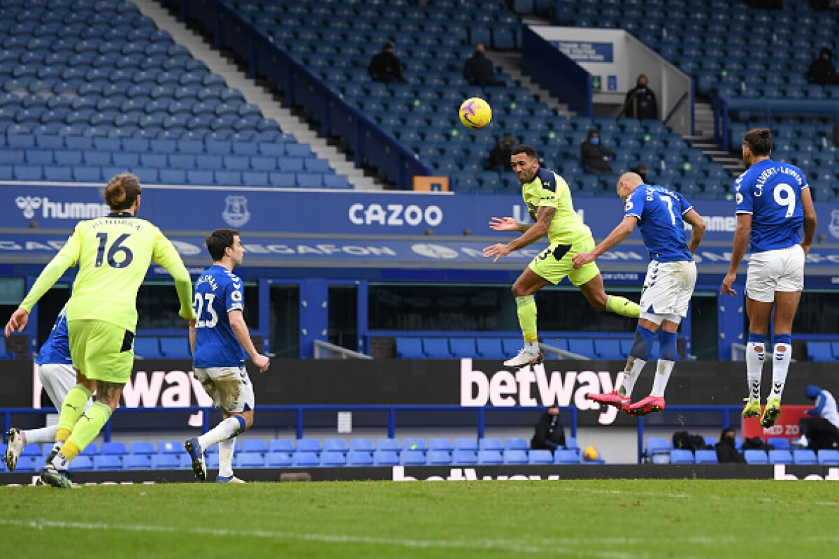 Vea el gol de Callum Wilson hoy Everton vs Newcastle por ...