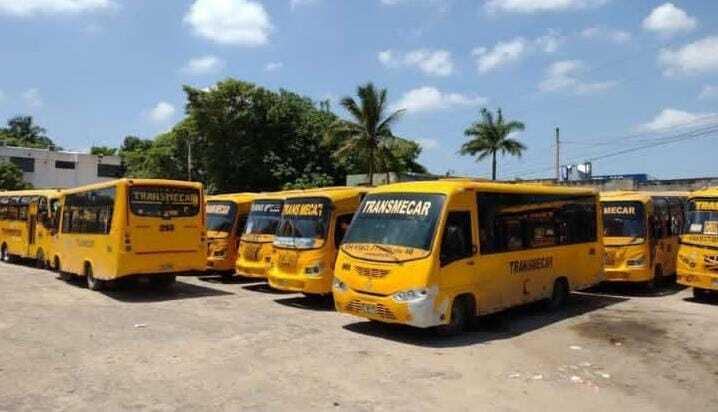 Buses Transmecar.jpeg