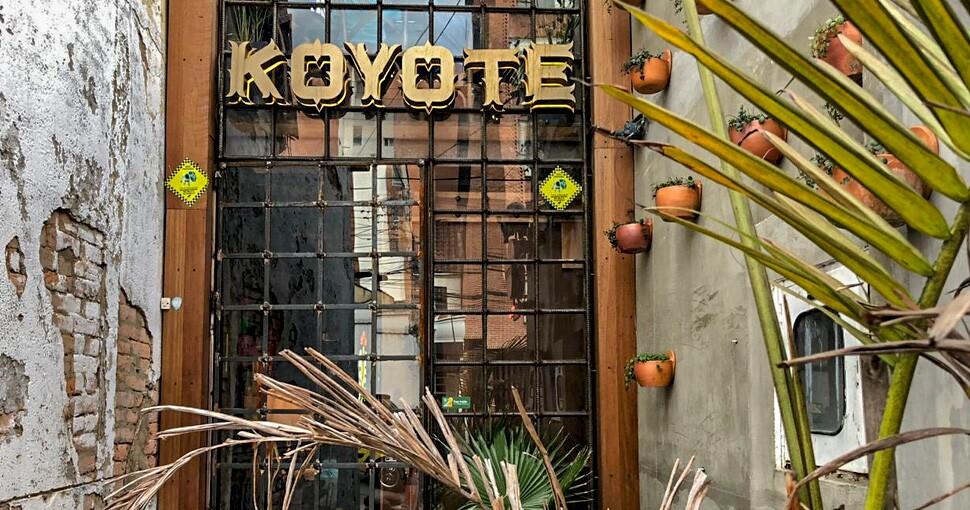 305317_koyote1.jpg