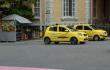 Taxis generia-jpg.png