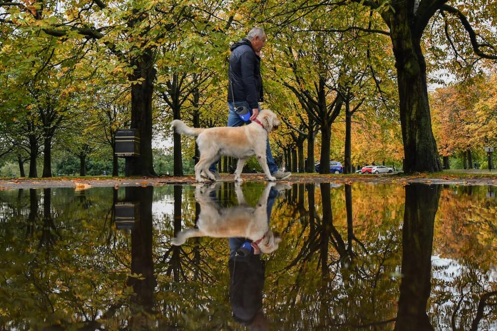 Persona reflexionando, imagen de referencia / AFP
