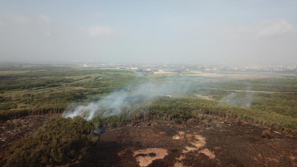 Incendios en el Vía Parque Isla Salamanca