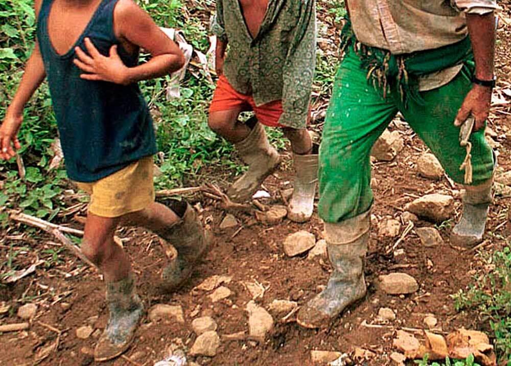 350271_BLU Radio. Desplazados en Colombia / Foto: AFP