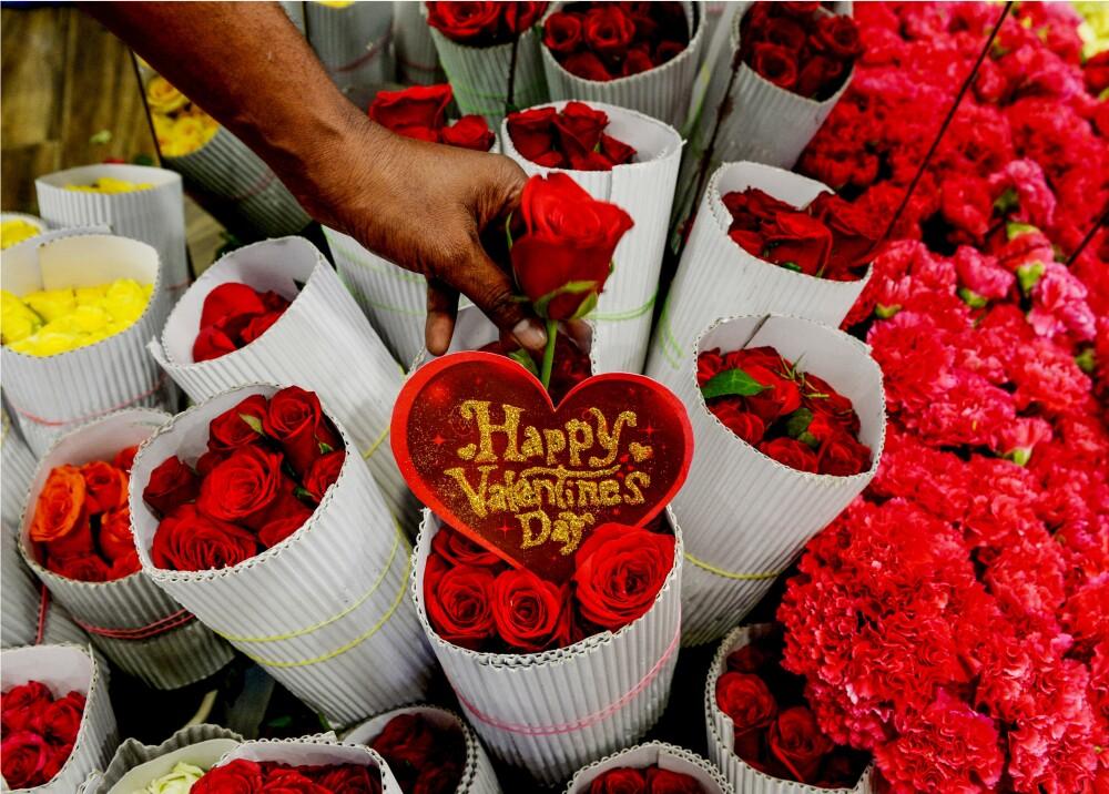 355323_Flores // Foto: Referencia AFP